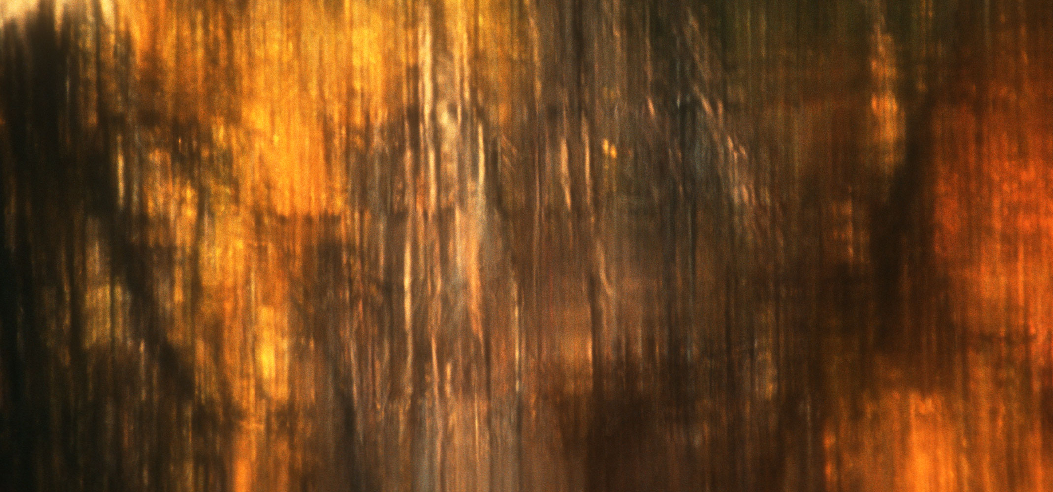 reflection   twilight   bronze   coppery   abstract