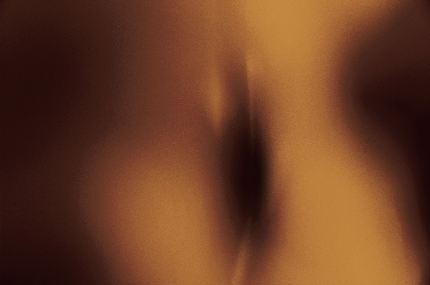 frisson:   coupling    nude    torsos   desert   wildflower  close intimate   sepia   attraction   naked    skin   magnetism  abstract