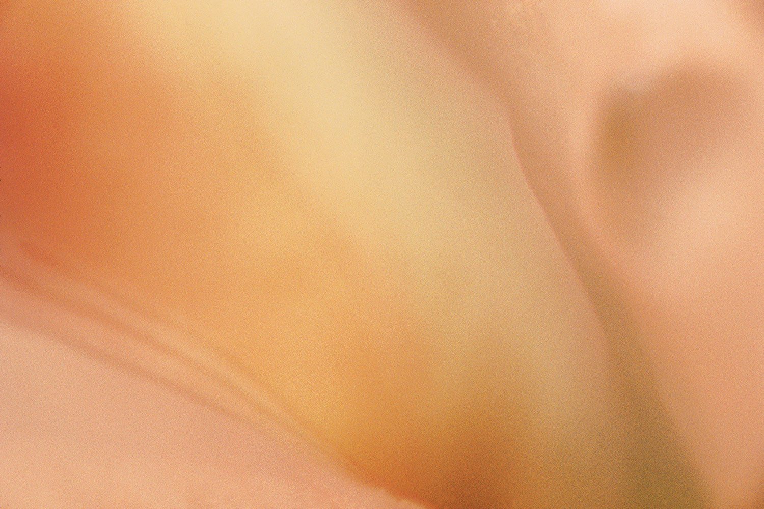 reverie:   surreal   desert    wildflower   nude    watercolor  Renaissance   terra-cotta     timeless    classical   sensual  abstract